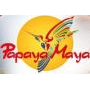 Papaya Maya Tours.png